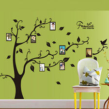 Family Tree Wall Decal Sticker Photo Picture Frame Removable Home Room Decor
