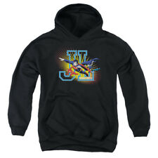 Justice League Heroes United Big Boys Youth Pullover Hoodie BLACK