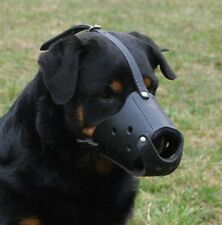 The Leader Dog Leather Muzzle Professional Pick