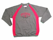 WISCONSIN BADGERS ADULT GREY EMBROIDERED V-NECK CREW SWEATSHIRT NEW