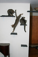 Cat Wall Shelf Carpeted (set of 4, 1 large, 3 small shelves)