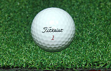 12' Wide Artificial Synthetic Turf Putting Green Grass