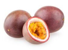 Passionfruit and Guava BBW Type Candle / Soap Making Fragrance Oil 1-16 Ounce