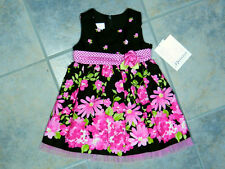 Baby Girls Pink Dress Floral Ruffles Infant 12-18 months Bonnie Baby New