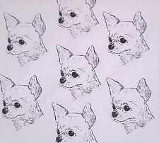 CHIHUAHUA SMOOTH #1 FABRIC NEW COLORS