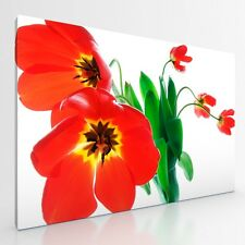 "Large Tulips Flowers Floral Canvas Picture Print Artwork. 20""x30"".  New Wall Art"