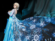 Frozen - Vestiti Carnevale Elsa Donna - Dress up Elsa Costumes Woman 8899020