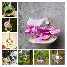 Glass Wall Hanging Vase Hydroponic Container Home Wedding Plante Flower Decor