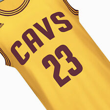 LeBron James #23 Cleveland Cavaliers Swingman Alternate Gold Jersey CAVS King