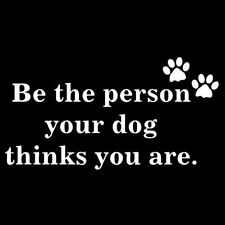 BE THE PERSON YOUR DOG THINKS YOU ARE (beagle owner boxer toy schnauzer) T-SHIRT