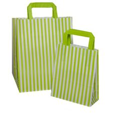 Green Candy Stripe Flat Handle Carrier Bags ~ Birthday Party Paper Gift Bag