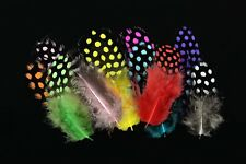 100Pcs/Lot LOOSE GUINEA Fowl Plumage Hackles Spotted Feathers Fly Tying Material