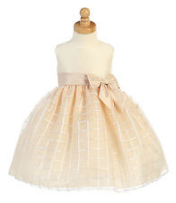 Champagne Baby Toddler Flower Girl Dress Pageant Wedding Birthday Easter M702