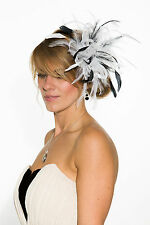 White Fascinator hat with black highlight/choose any colour satin/feathers