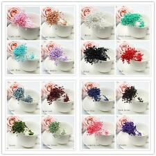 280/Artificial Flower Stamen Double Tip Pearlized Craft Cards Cakes Decor Useful