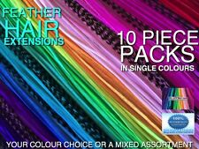 Feather Hair Extensions Single Colours Tool Beads Kits Options + FREE Gift Val$7