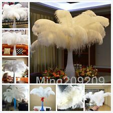 Wholesale 10-100pcs High Quality White OSTRICH FEATHERS 6-28'inch/15-70cm &1