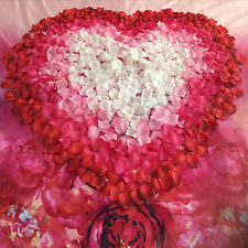100 New Silk Rose Petals Ideal For Engagement Wedding Birthday Party Decorations