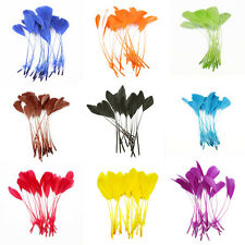 20-100pcs Stripped Coque Feathers 5-7 inch /Millinery DIY Crafts Feathers
