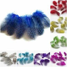 Guinea Fowl Feathers, Card Making Crafts, Millinery Dyed Colours