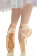 NWT Gaynor Minden Pointe Shoes-Size 8