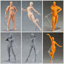 He/She Male/Female PVC Action Figma Figure Doll Human Body Toy For Drawing