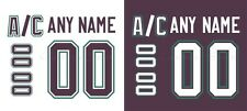 Mighty Ducks of Anaheim 93-06 Hockey Jersey Customized Number Kit un-stitched