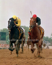 "Sunday Silence 1989 Preakness Stakes Remote Photo 8"" x 10 - 24"" x 30"""