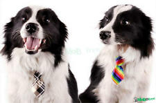 Fashion Adjustable Tie Necktie Collar Lovely Dog Cat Puppy Pet Kitty Accessory