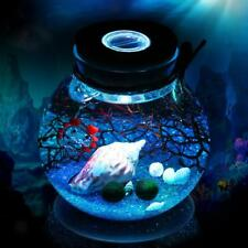 Magideal Glass Bottle Jar Terrarium Display Container With Glow LED Cork Stopper