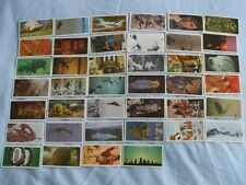 BROOKE BOND TEA CARDS:UNEXPLAINED MYSTERIES 1987:BUY INDIVIDUALLY NO's 1 - 20