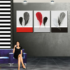 Feathers Top Quality Gallery Wrapped Canvas Print Can Add Wall Clock Home Decoal