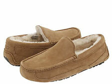 NEW MEN UGG AUSTRALIA SLIPPER ASCOT CHESTNUT SUEDE 5775 ORIGINAL FREE SHIPPING