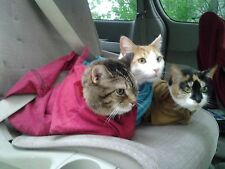 Cat-in-the-bag Cozy Comfort Carriers     Gently Used Small