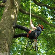 Tree surgery Starter Climbing Kit , harness, rope, carabiners, lanyard,35m rope