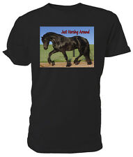 Black Horse T shirt, Just Horsing Around - Choice of size & colours!