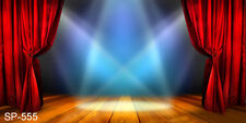 INDOOR STAGE 20 w x 10 h FT CP PHOTO SCENIC BACKGROUND BACKDROP SP555