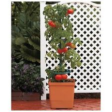 Self Watering Tomato Planter Space Saver Planter Balcony Garden Support Tower