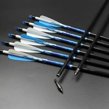 Blue Reflective Flames WRAPS Fiberglass arrows Replaceable Screw-In Tips -Ch