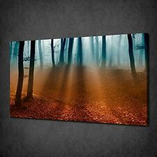 AUTUMN DARK FOREST SUNRAYS MODERN CANVAS WALL ART PRINT PICTURE READY TO HANG
