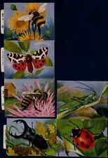 ENGLAND GREAT BRITAIN INSECTS BUTTERFLY,LADY BUG DRAGONFLY LOT OF FINE 6 LABELS