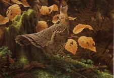 Jean-luc Grondin Gelinotte Huppee-Ruffed Grouse Signed Limited Edition of 2510
