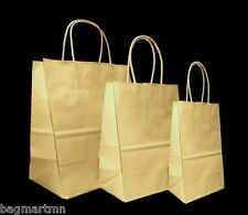 Mixed Small Sizes Kraft Brown Paper Retail Gift Rope Handle Tote Shopping Bags