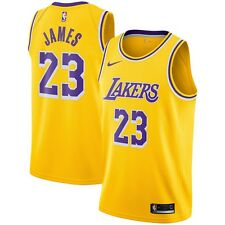 2018-2019 Nike Los Angeles Lakers LeBron James #23 Icon Edition Swingman Jersey