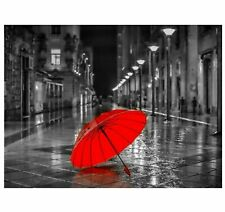DIY Painting By Numbers Kit Landscape Red Umbrella Acrylic Paint Frameless