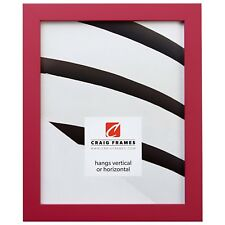 """Craig Frames 0.875"""" Confetti, Modern Pink Solid Wood Picture Frame"""