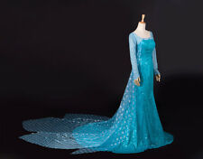 2014 Fancy Snow Frozen Elsa Queen Adult Women Evening Party Costume Elsa Dresses