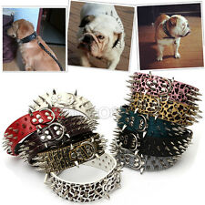 Spiked Studded Leather Pet Dog PitBull Mastiff Terrier Staffy Heavy Duty Collar