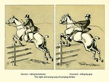 Set of 6 Prints From Cross Country With Horse And Hounds By J. Crawford Wood
