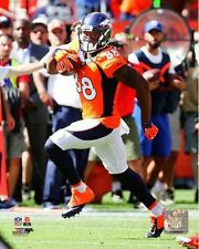 Demaryius Thomas Denver Broncos 2014 NFL Action Photo (Select Size)
